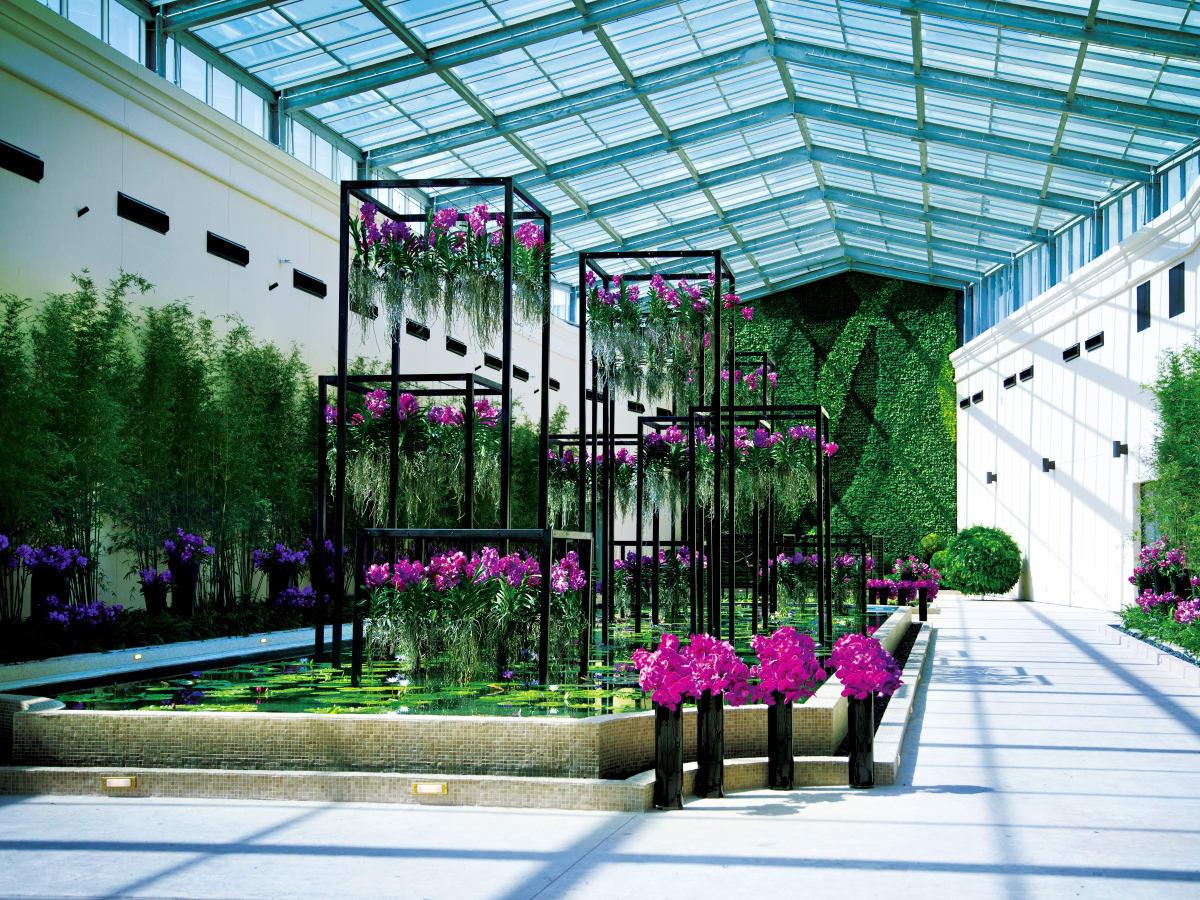 Houston, Gallery Furniture Grand Parkway Opening, June 2015, Atrium