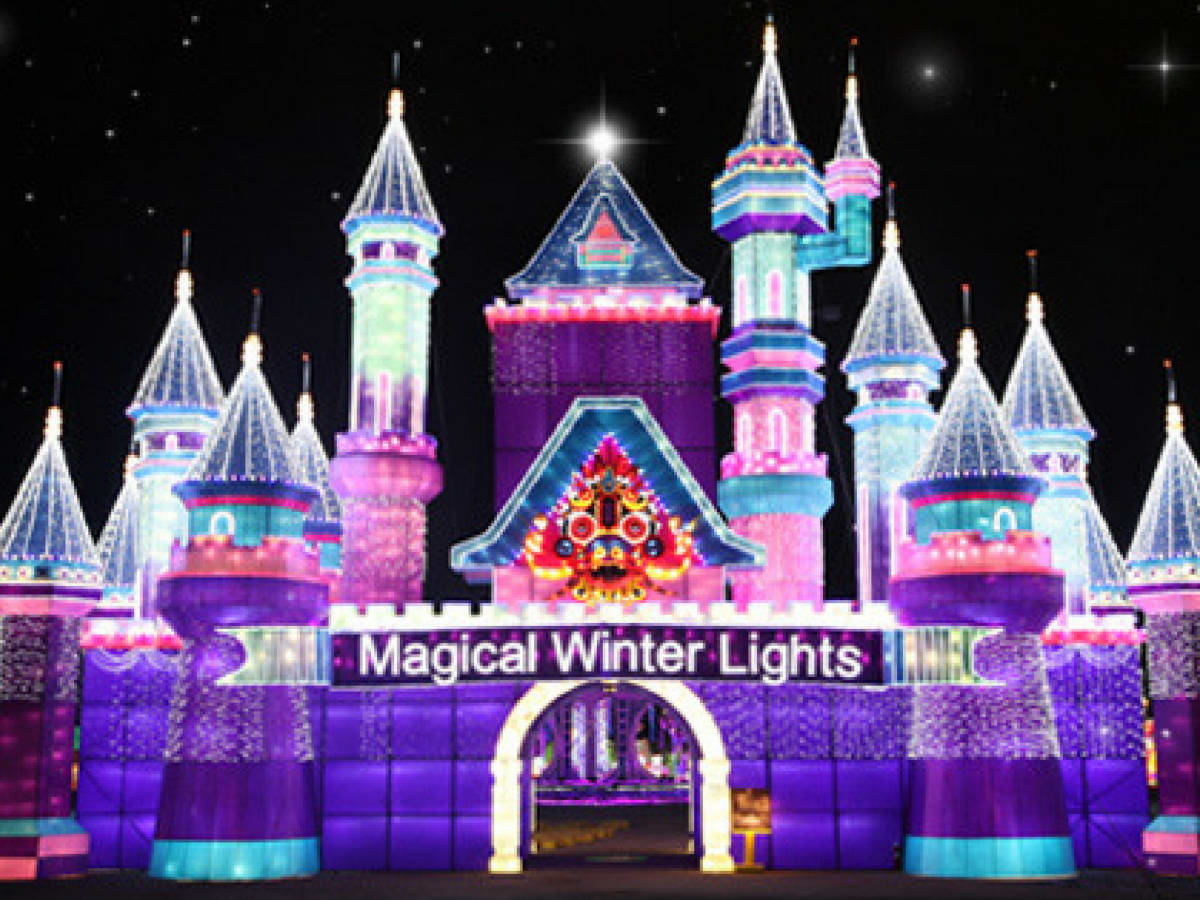 Magical Winter Lights
