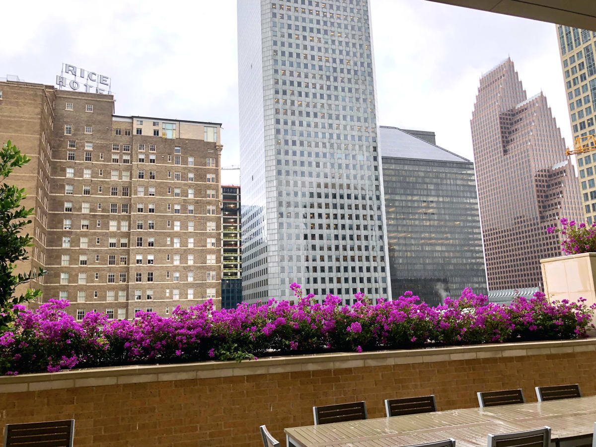 Houston, Aris Market Square, December 2017, view from the pool deck