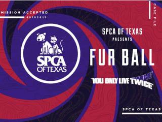 SPCA Fur Ball