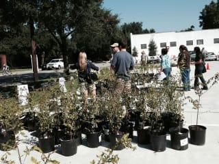 The Houston Heights Association presents Yale Green Corridor Dedication