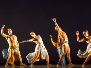 METdance presents United in Dance