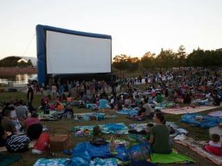 Mueller Austin presents Movies at Lake Park