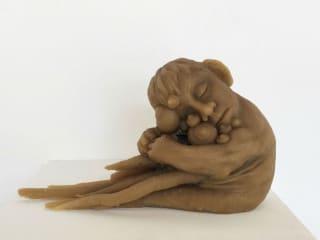 Redbud Gallery presents Sarah Fox: The Genetic Viability of Finn and Joni