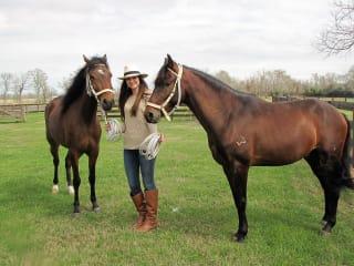 Southwestern Paso Fino Horse Association presents Fandango Tejas 2017