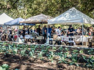 Farmhouse Delivery presents East Austin Urban Farm Tour