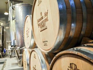 Messina Hof Winery Grapevine
