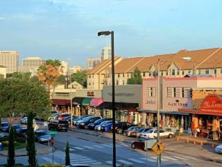 Rice Village shopping district West U West University Place