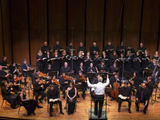 "2015 Houston Early Music Festival: Bach Society Houston presents ""Music for Celebration"""