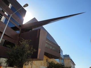 Austin City Hall armadillo tail