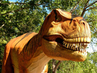 Heard Natural Science Museum & Wildlife Sanctuary presents Dinosaurs Live!