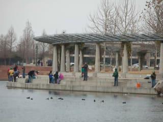 Mueller Lake Park_Hooke on Mueller fisihing_2014