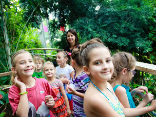 Texas Discovery Gardens Presents Fair Park Fourth: Red, White and Butterflies