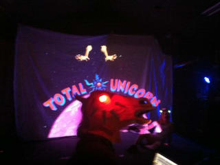 Total Unicorn performing at Ditch The Fest 2