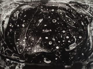 Conduit Gallery, Robert Munguia