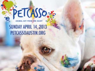 Austin Photo_Event_Petcasso