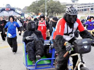 Austin Photo Set: News_Matt_austin gorilla run_ jan 2013_3