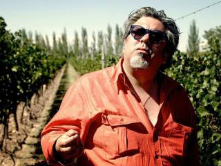 El Camino del Vino