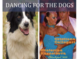 """All Border Collie Rescue hosts """"Dancing for the Dogs"""""""