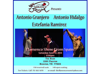 "The Flamenco Room presents ""Perspectives"""