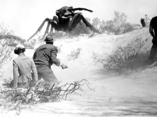Friday Night Creature Features
