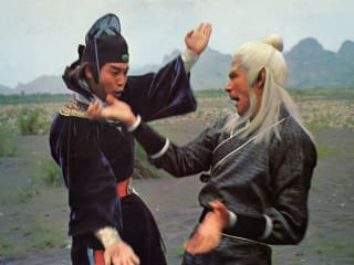 scene from vintage martial arts movie for Austin Film Society's Old School Kung Fu Weekend