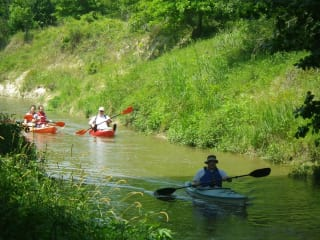Bayou Preservation Association's Cypress Creek Regatta