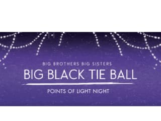 "Big Brothers Big Sisters' 2014 ""Big Black Tie Ball"""