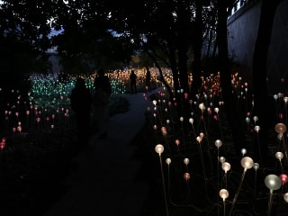 Discovery Green art installation: Field of Light by Bruce Munro