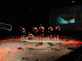 Muscle Memory Dance Theatre