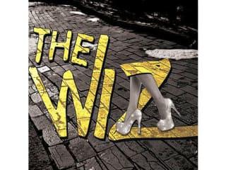 Bayou City Theatrics presents The Wiz