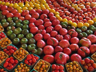 Spingdale Farm_tomatoes_peppers_beets_eggplants_2015