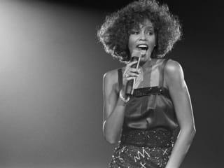 The Austin Gay & Lesbian International Film Festival and The Q Austin presents <i>Whitney: Can I Be Me</i>