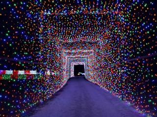 Christmas Light Fest
