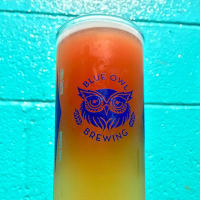 Blue Owl Brewing craft sour beer Austin brewery