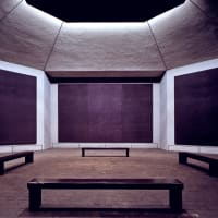 Events-Tariq Ali at Rothko-Nov 09