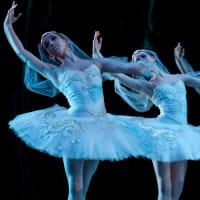 Houston Ballet artist of the Houston Ballet in La Bayadere 2013