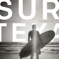 The Bullock Texas State History Museum presents High Noon Talk: Surf Texas