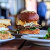 Odd Duck burger sandwich
