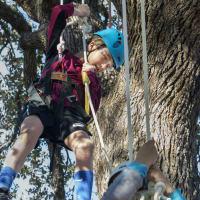 Winter Tree Fest