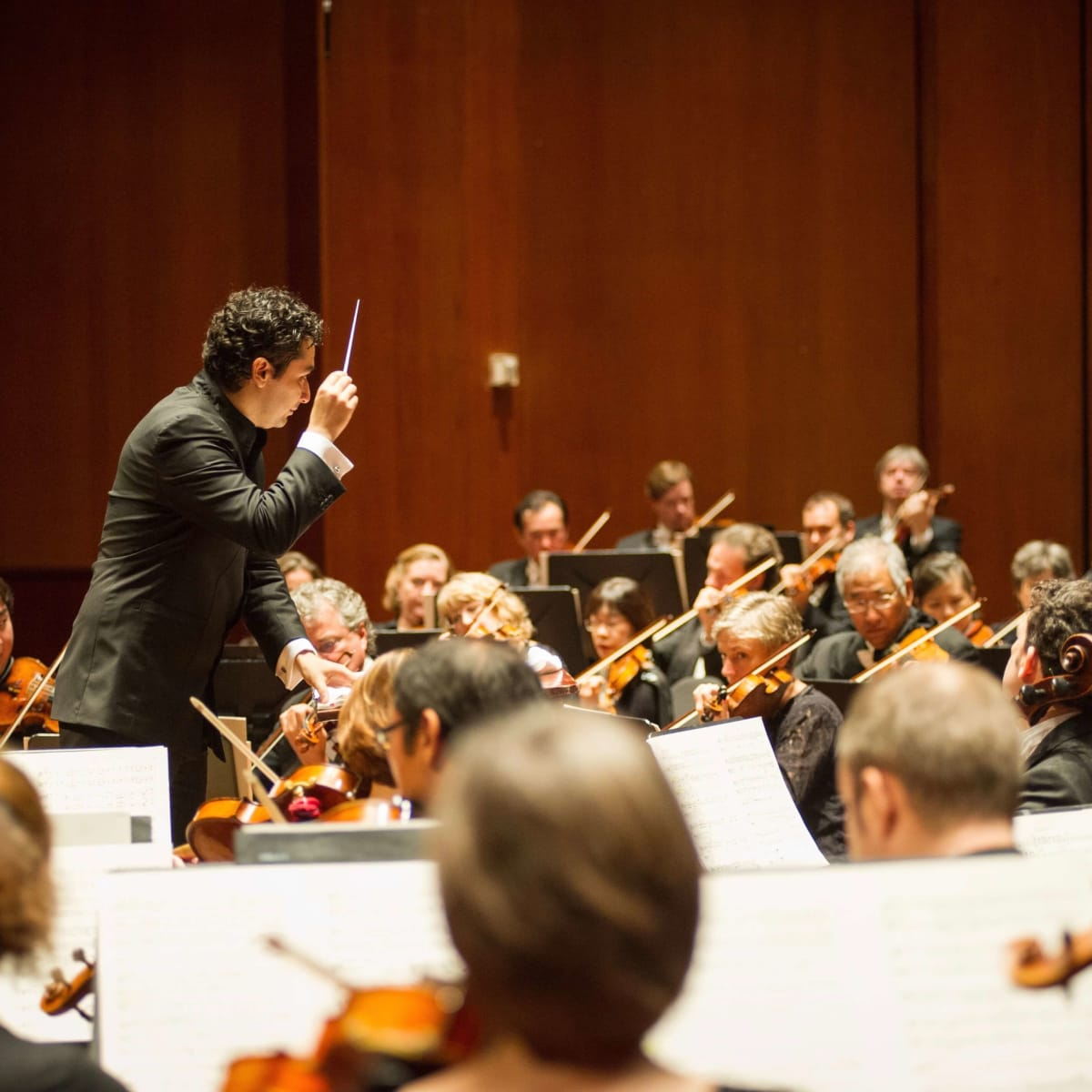Theater District Open House 2016-Houston Symphony