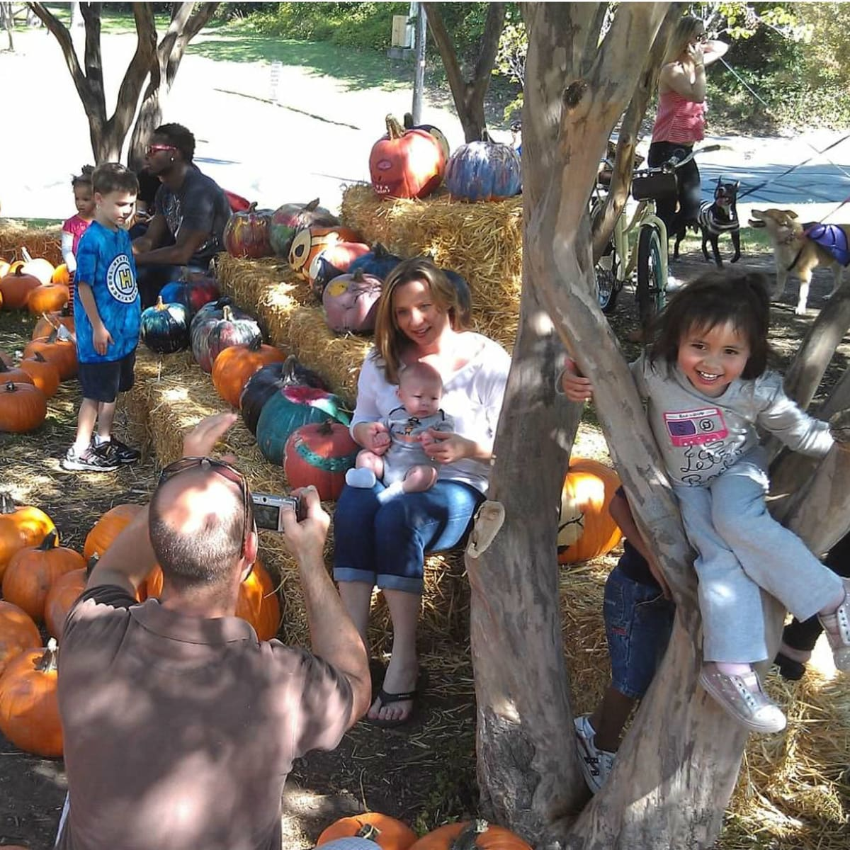 Turtle Creek Association presents Pumpkins in the Park