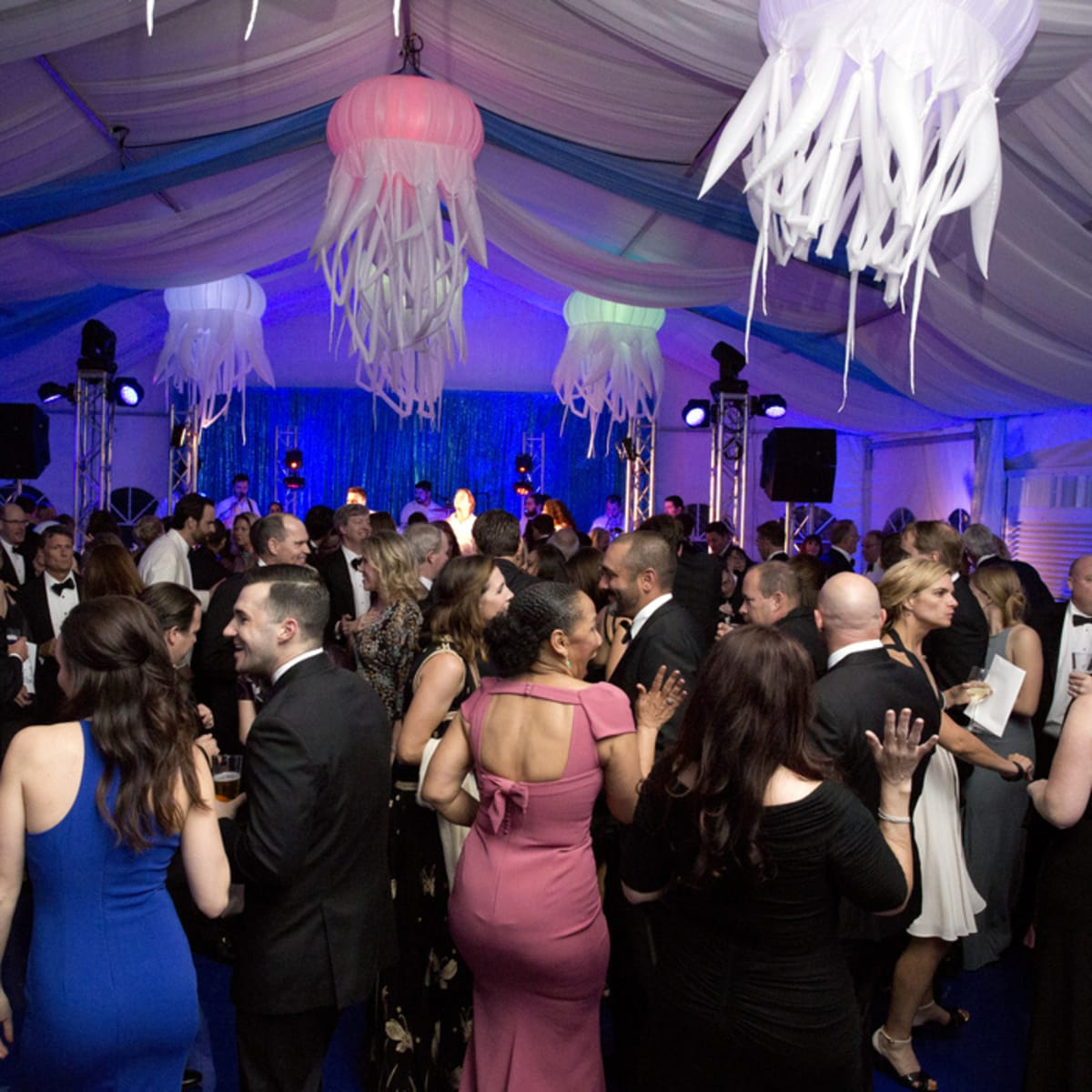 Houston, Zoo Ball Aquatic Affair, April 2017, decor