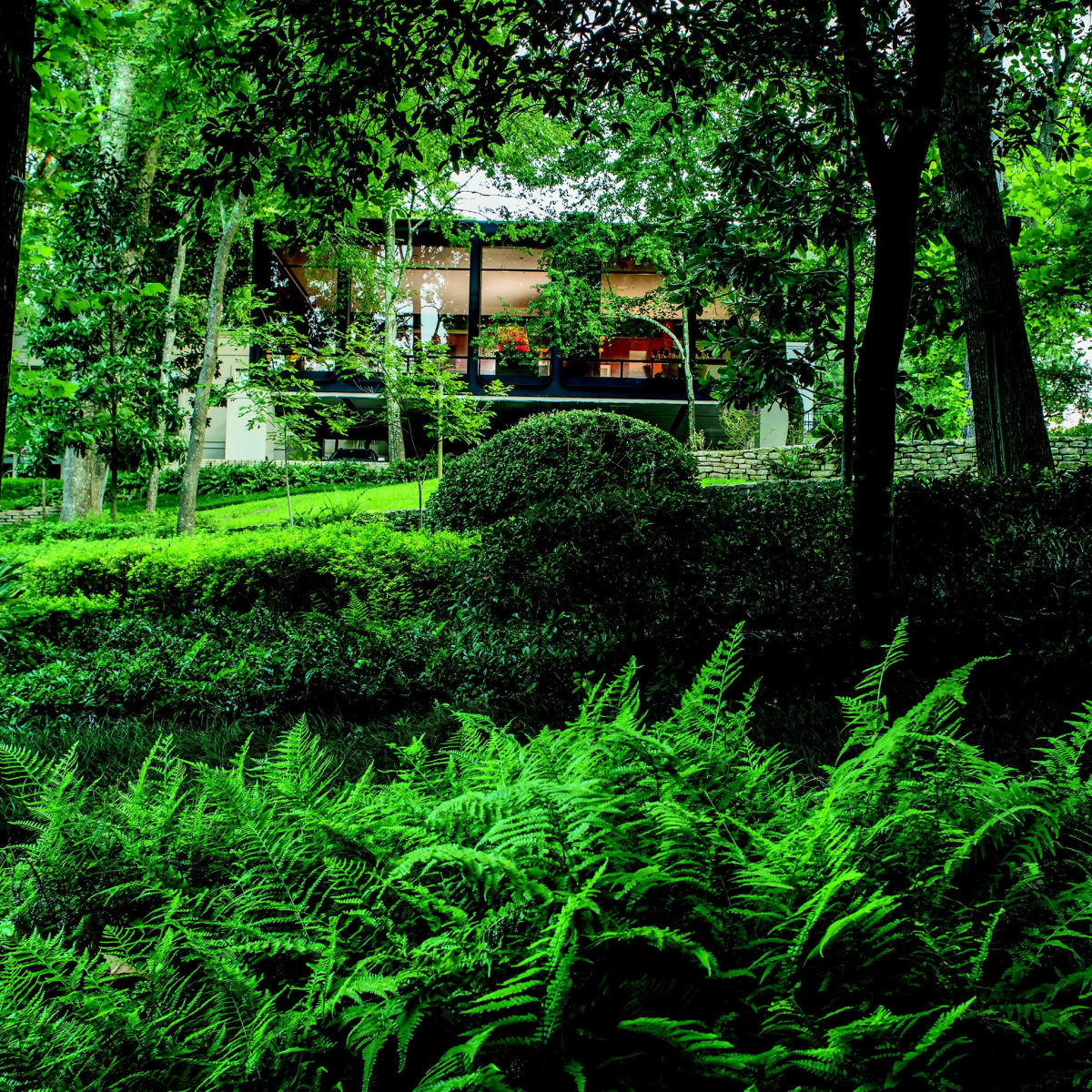 2930 Lazy Lane wooded outdoors
