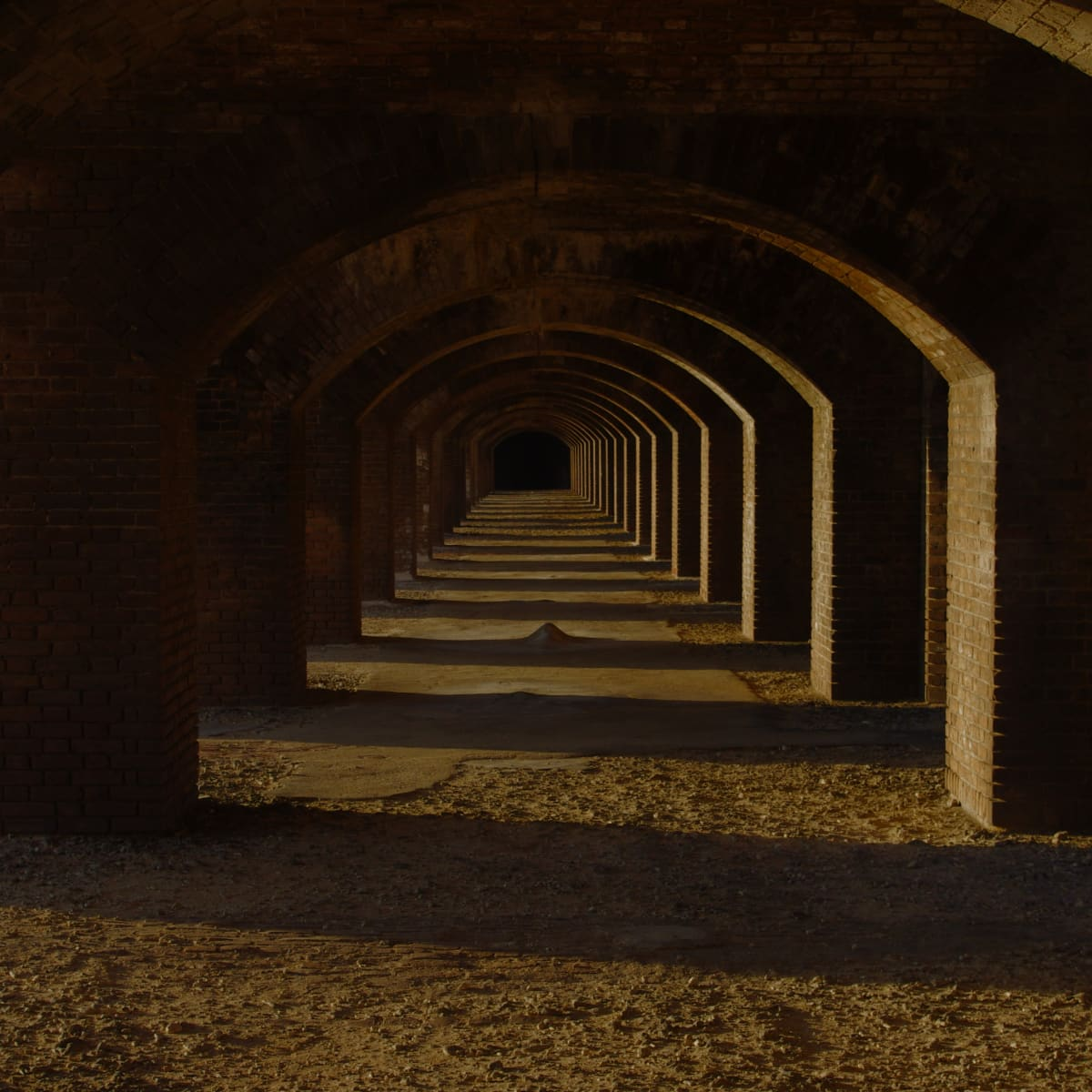 tortugas_arches