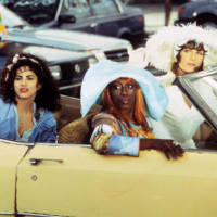 The Austin Gay & Lesbian International Film Festival presents To Wong Foo Thanks For Everything, Julie Newmar.