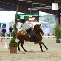Angels & Horses Third Annual Haras Cup Soiree and U.S. Premier Working Equitation Championship