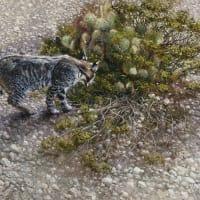 Southwest Gallery presents Robert Fobear: Nature Embracing Wildlife