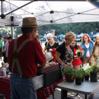 Houston City Hall farmers market with shoppers