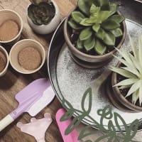 Ruibal's Plants of Texas presents Spring Break